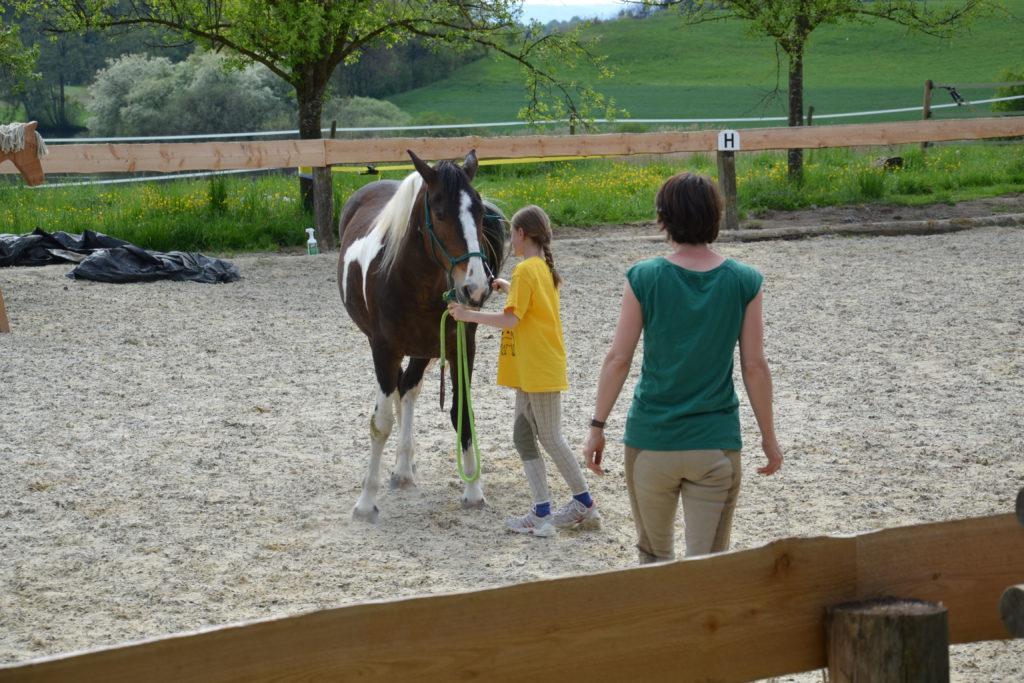 Lernen Sie neue Wege kennen für die alltäglichen Herausforderungen Ihres Familienlebens - pferdegestützte Familientherapie Regensburg