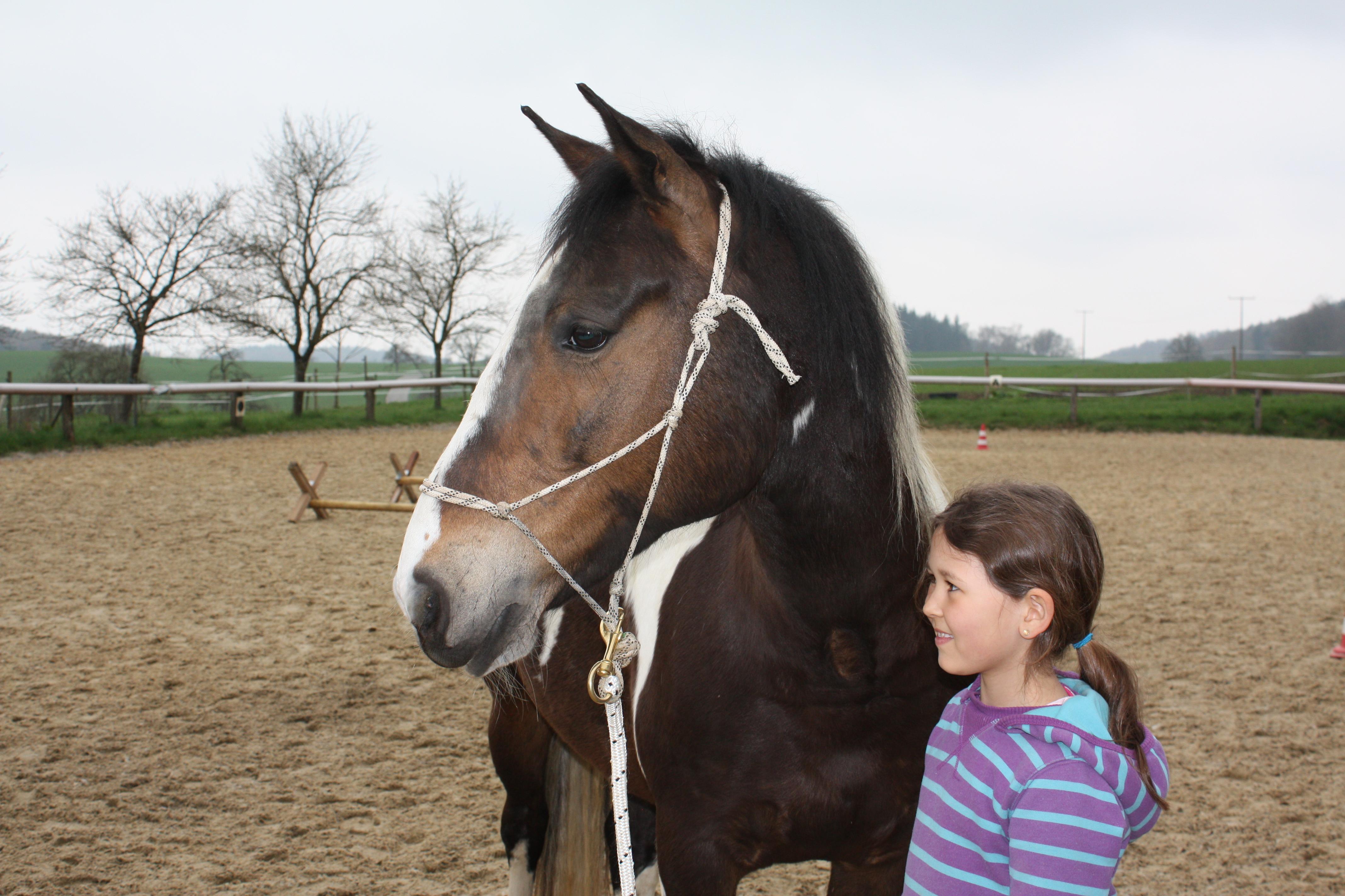 Das Besondere an der pferdegestützten Therapie ist der Kontakt zwischen Mensch und Pferd im Hier und Jetzt - Nicola Mündemann, Dipl. Psych.
