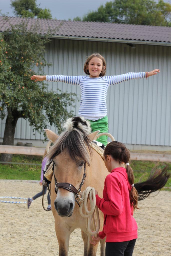 spannende Erlebnisse für Geschwister-Kinder mit dem Partner Pferd - Geschwister-Kinder-Projekt Regensburg