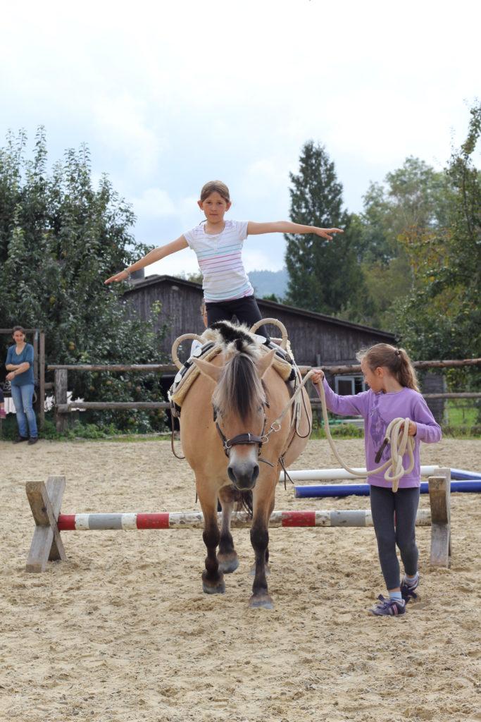 Herausforderungen für Eltern und Geschwister bei der pferdegestützten Familientherapie Regensburg